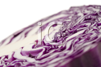 Extreme close-up of purple cabbage over white (shallow DOF). Useful as diet background