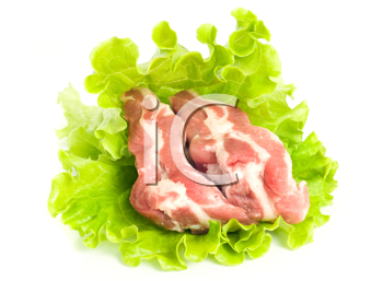 Pieces of Pork meat on green salad. Isolated over white