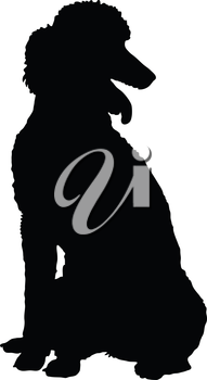 A Poodle dog shown in sitting position in black silhouette profile.