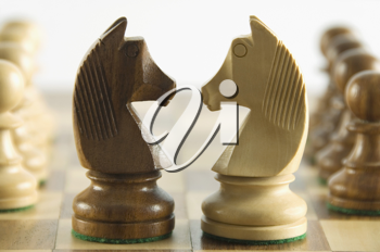 Close-up of chess knights face to face