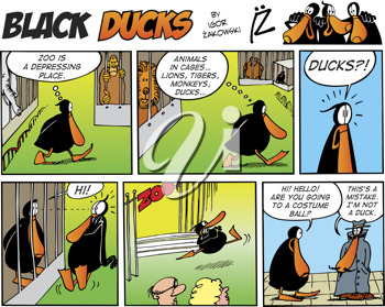 Royalty Free Clipart Image of a Black Ducks Comic Strip in the Zoo
