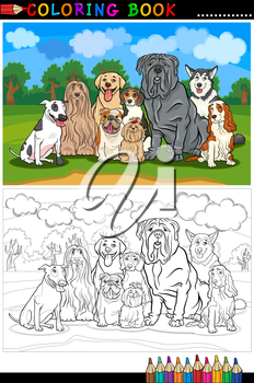 Cartoon Illustration of Funny Purebred Dogs like Bull Terrier, Colie, Bulldog, Maltese, Beagle, Spaniel and Husky for Coloring Book or Coloring Page