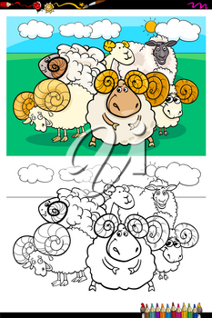 Cartoon Illustration of Funny Sheep Farm Animal Characters Coloring Book Activity
