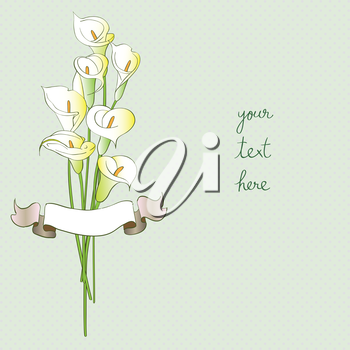 Greetings card with callas and ribbon, hand drawn illustration of a flowers bouquet over a light green background with dots