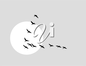 Royalty Free Clipart Image of Flying Ducks