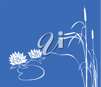 Royalty Free Clipart Image of Water Lilies and Reeds