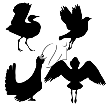 Royalty Free Clipart Image of Bird Silhouettes