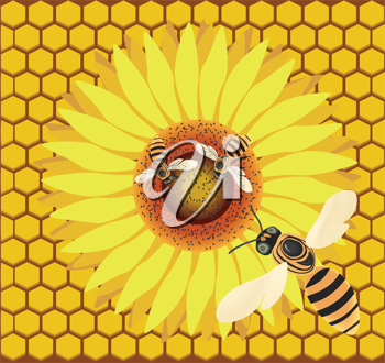 Royalty Free Clipart Image of Bees on a Flower Against Honeycomb