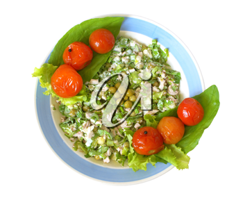Salad from above a squid with greens decorated with tinned tomatoes on a white background.