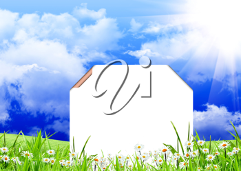 White sign with flowers and green grass