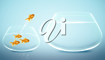 goldfish  jumping to Big bowl, Good Concept for new life, Big Opprtunity, Ambition and challenge concept.