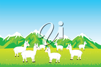 Vector illustration herd sheep on year meadow