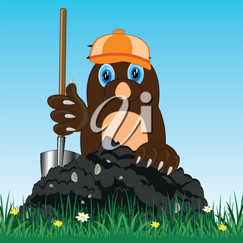 Vector illustration of the mole in cap and with shovel digging land
