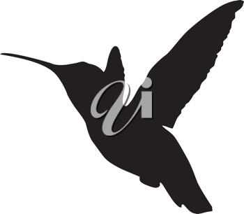 Silhouette of a hummingbird