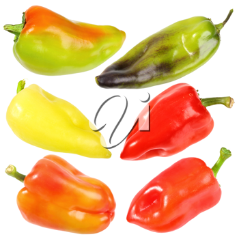 Set of six sweet fresh peppers. Close-up. Isolated on white background. Studio photography.