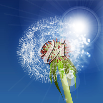 Dandelion seeds blown in the blue sky. Vector illustration