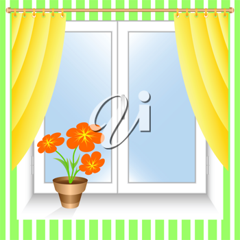 Flower at a window.