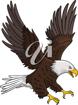 Bald Eagle isolated on white. This vector illustration can be used as a print on T-shirts, tattoo element or other uses