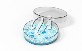 The germs in the petri dish, 3d rendering. Computer digital drawing.