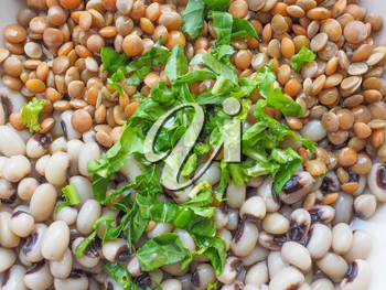 Beans and lentils legumes with rocket salad