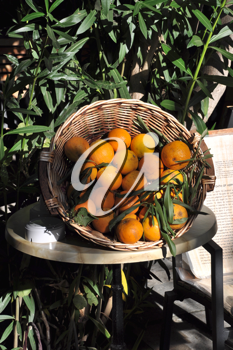 Royalty Free Photo of a Basket of Oranges
