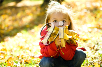 Royalty Free Photo of a Little Girl Playing With Leaves in Autumn