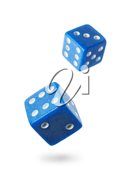 Two blue gambling dices falling down isolated on white .Local focus