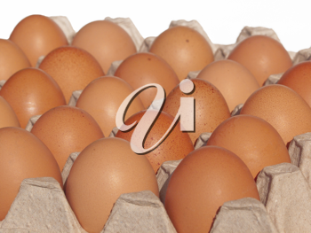 Royalty Free Photo of Eggs