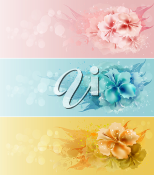 Set of Floral Beauty Design Backgrounds