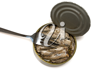 Royalty Free Photo of Canned Fish