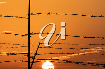 Silhouette of barbed wire fence on sunset background