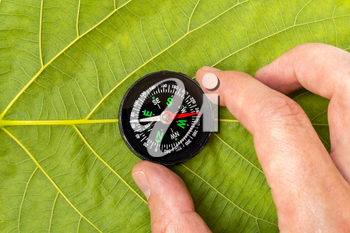 Man discovering nature with compass on the leaf background, travel lifestyle concept