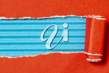 Red torn paper to reveal blue panel ideal for copy space