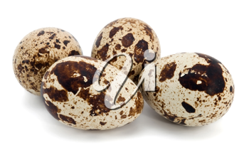 Four quail eggs on the white