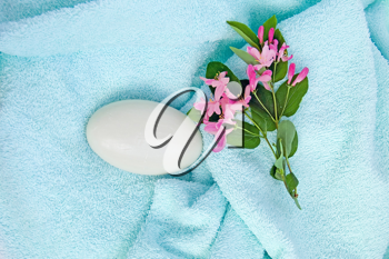 White soap and pink flowers blooming twig on a blue towel