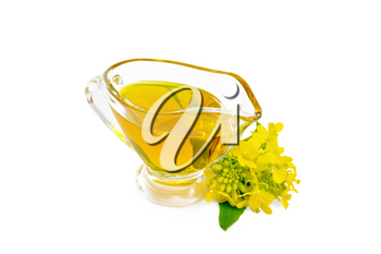 Mustard oil in a glass gravy boat, yellow mustard flowers isolated on white background