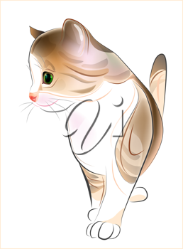 Royalty Free Clipart Image of a Kitten