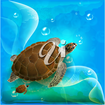 Royalty Free Clipart Image of Turtles Swimming