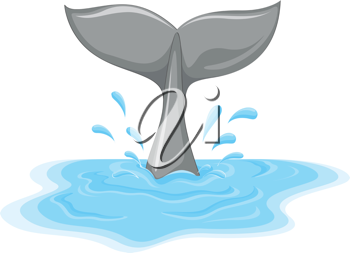 Illustration of a whale tail