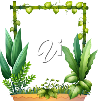 Illustration of green plants on a white background