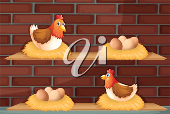 Illustration of two hens laying eggs at the wooden shelves