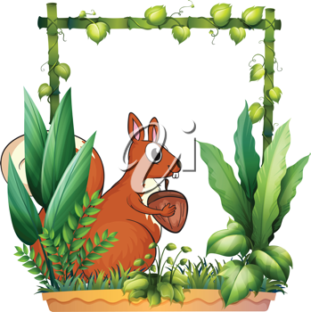 Illustration of a squirrel and the nut on a white background