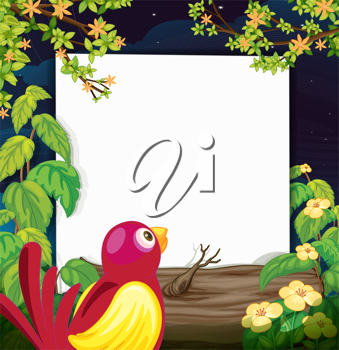 Illustration of a bird and a white board in a beautiful dark night