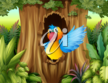 Illustration of a bird in a tree hollow