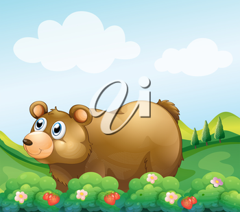 Illustration of a brown bear in the strawberry garden