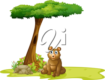Illustration of a tree with a hollow at the back of a bear on a white background