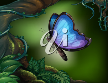 Illustration of a butterfly in the rainforest