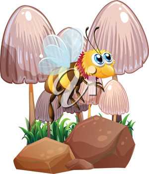 Illustration of a bee near the mushrooms and rocks on a white background