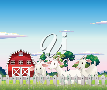 Illustration of the three goats inside the fence at the farm