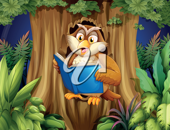 Illustration of an owl reading a book at the tree
